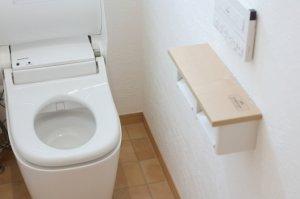 節水トイレが詰まりやすい原因は便器内の流し方にあり 解消法は?