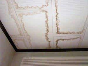 アパートの天井から水漏れ!原因・対処法や修理費用について知ろう