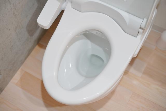 トイレが詰まりやすい状態を解消!原因・対処・予防について解説