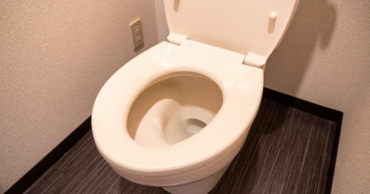 トイレのゴボゴボ音は排水溝の詰まりが原因?業者に頼らない解消法